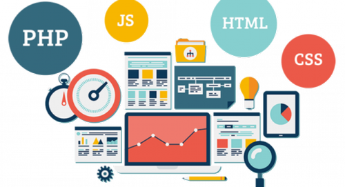 advantages of custom web development