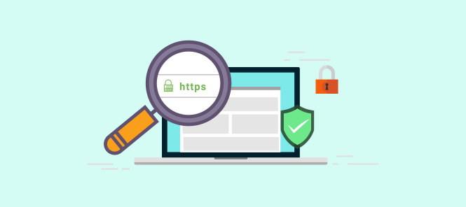 How to protect your wordpress website using HTTPS.